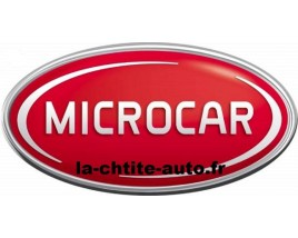CUSTODE PASSAGER MICROCAR MC1