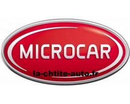 VITRE DE PORTE PASSAGER D'OCCASION MICROCAR MGO-M8